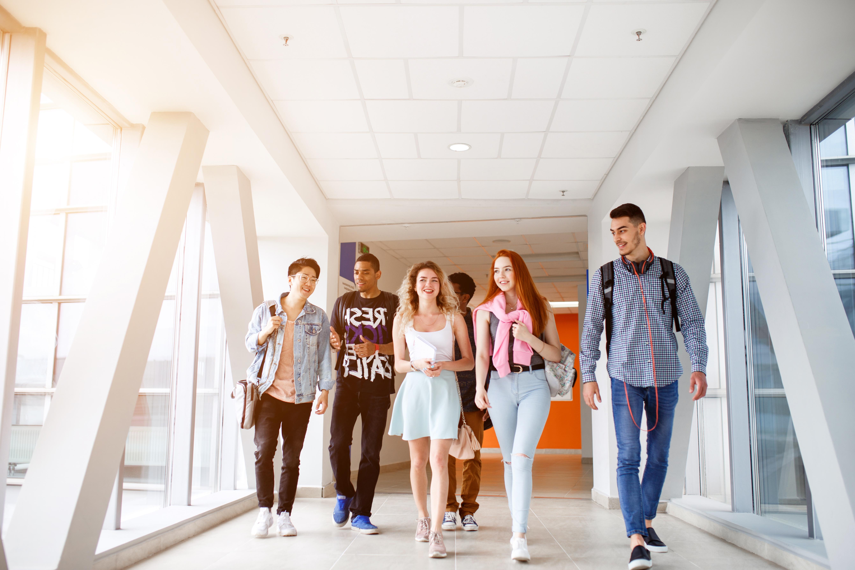 Студенты, которые могут получить ВНЖ Голландии по учебе